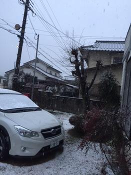 IMG_2946.JPG